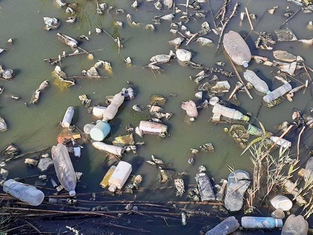 Râul Ialpug plin de deșeuri. Foto: Anatol Zalevschii