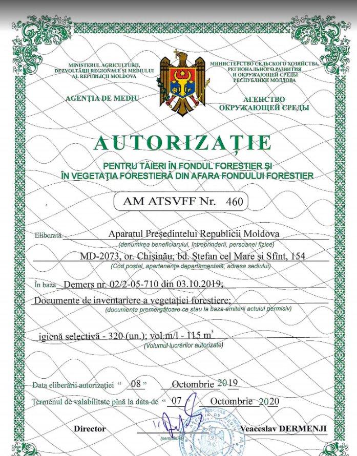 Autorizaţie de tăieri de arbori la reşedinţa preşedintelui Igor Dodon