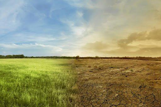 Schimbarea climei: un fenomen fără frontiere!