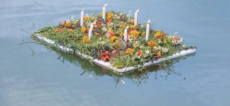 Flori magice pe apa de la Leordoaia