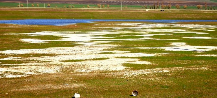 Declarația Partidului Verde Ecologist în privința irigării solurilor cu ape subterane