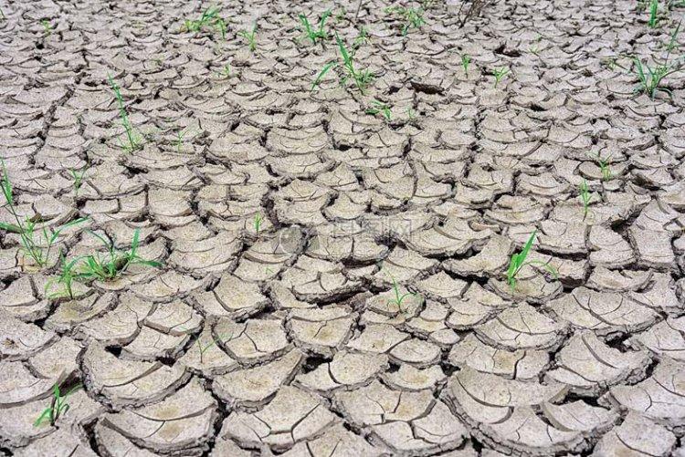 Statul va ceda apele subterane?