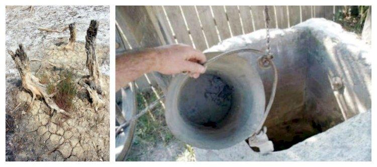 Irigarea cu apa din surse subterane: Interesele ascunse vor redeschide Cutia Pandorei