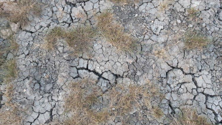 Însetat de putere, Dodon vrea să lase Moldova şi fără apă