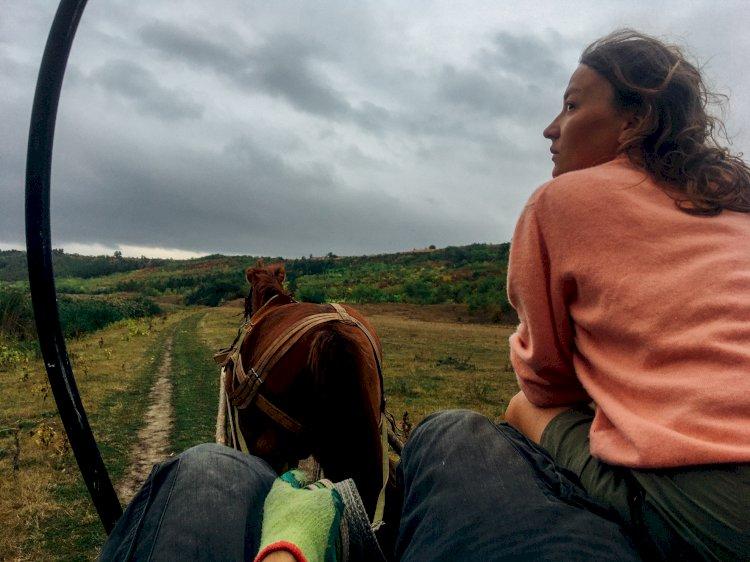 Povestea celor patru cai. O altfel de călătorie prin Moldova
