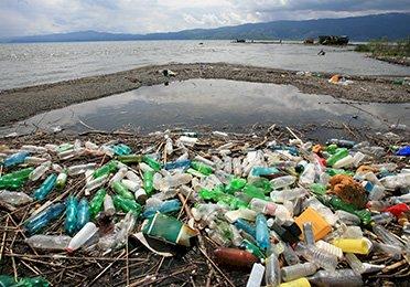De unde începe educaţia ecologică