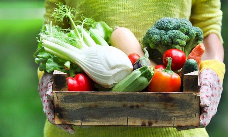 7 legume și fructe de sezon în luna mai