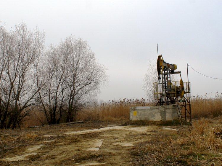 Scrisoare deschisă către Guvern din partea locuitorilor Sloboziei Mari: Lacul Beleu e pe cale de dispariție și trebuie salvat